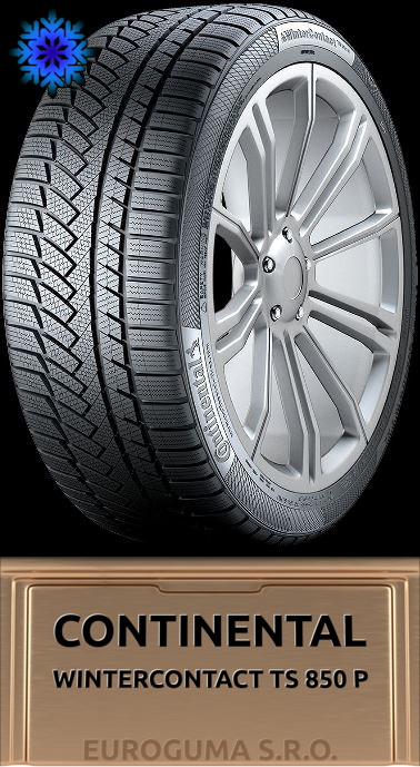 CONTINENTAL WINTERCONTACT TS 850 P 205/60 R17 93H FR