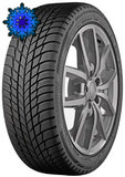 BRIDGESTONE DRIVEGUARD WINTER 205/60 R16 96H RFT XL