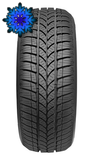 TAURUS WINTER 601 165/70 R13 79T